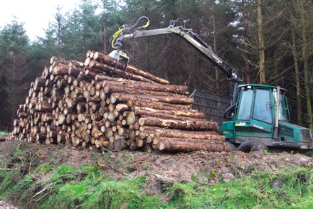 PTS Forestry Contractors offer a range of services to forest owners and managers.