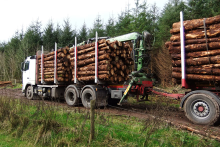 PTS  use our own trucks to move timber for the woods to the end user.